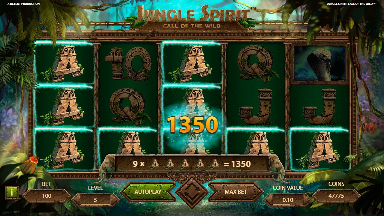 Gaming process at Jungle Spirit: Call of the Wild slot machine