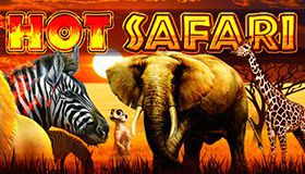 Hot free spins and big wins in ZigZag777 Casino